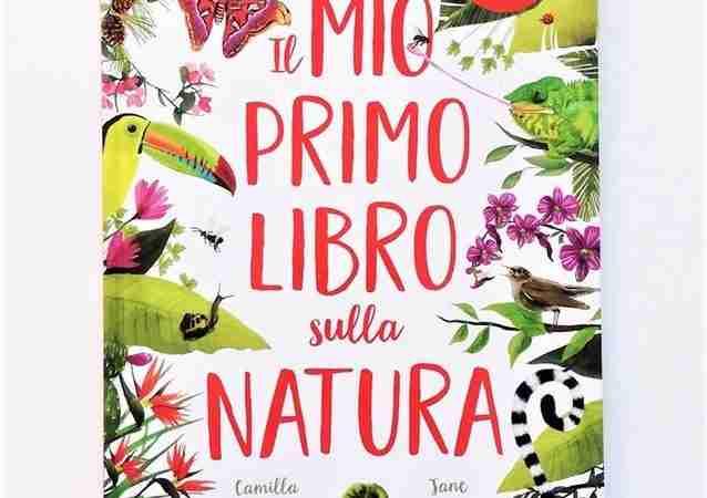 IL MIO PRIMO LIBRO SULLA NATURA di Camilla de la Bedoyere e Jane Newland, SASSI JUNIOR