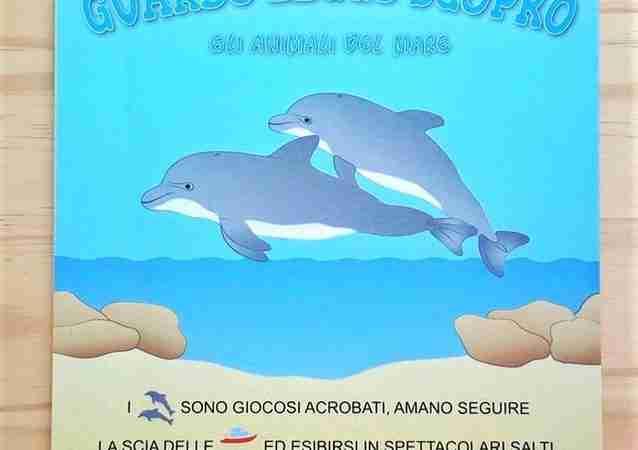 GLI ANIMALI DEL MARE di Eugenia Dolzhenkova e Luca Grigolato, PAPELU