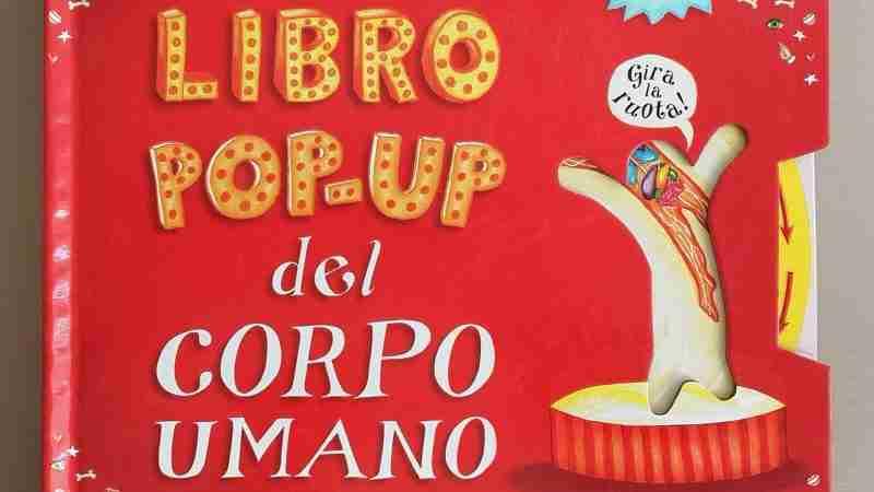 GRANDE LIBRO POP-UP DEL CORPO UMANO di William Petty, EDITORIALE SCIENZA