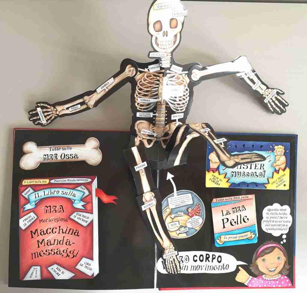 GRANDE-LIBRO-POP-UP-DEL-CORPO-UMANO-lo-scheletro
