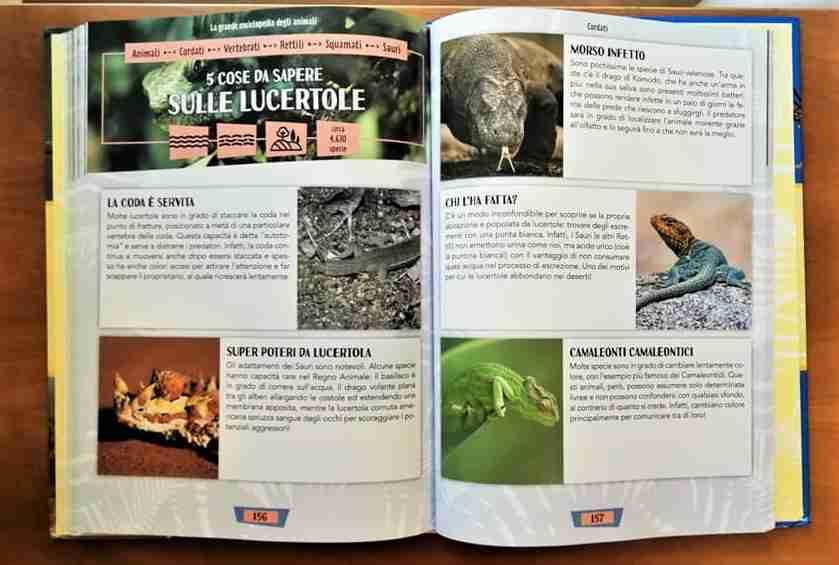 La grande enciclopedia degli animali le varie specie