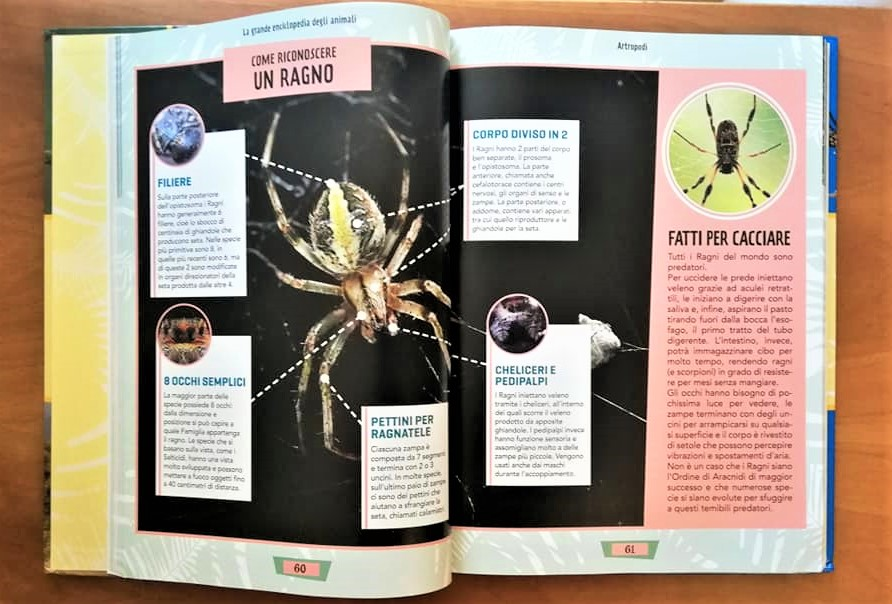 La grande enciclopedia degli animali recensione