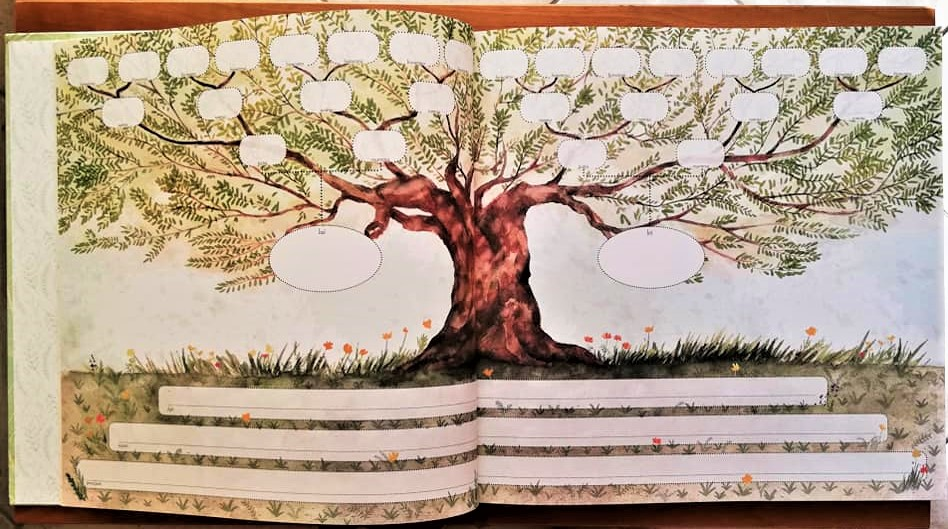 l'albero genealogico