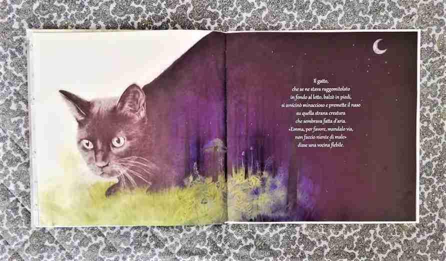 DOVE VIVONO I SOGNI libro illustrazioni