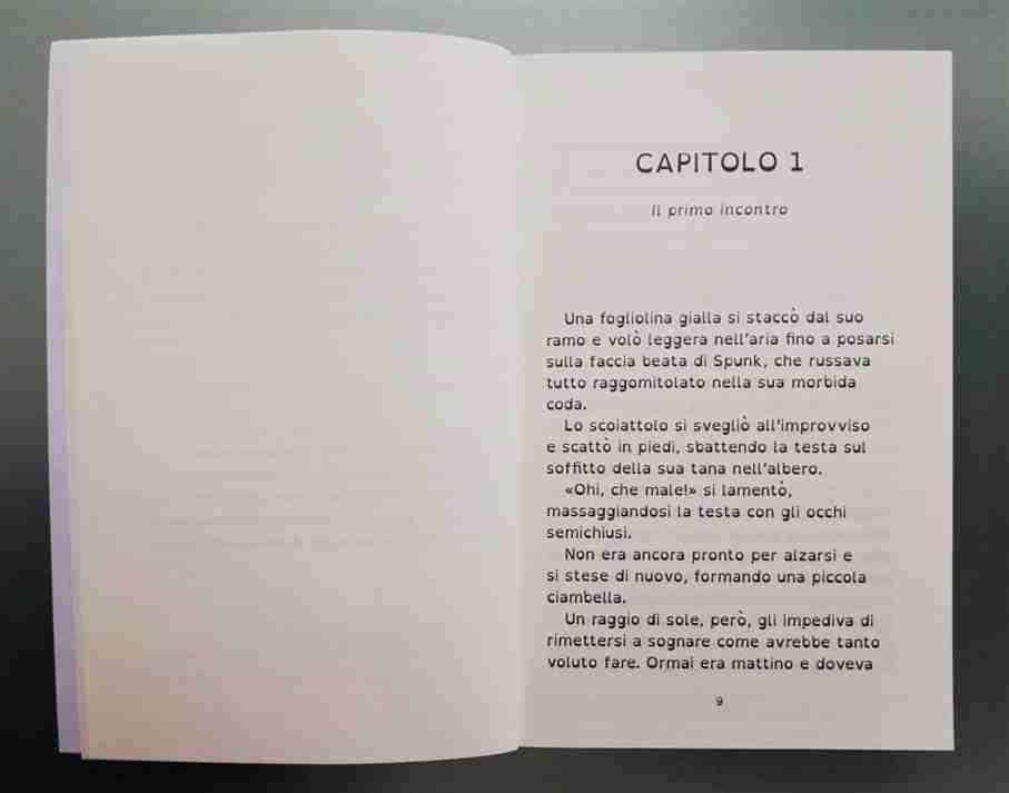 LE AVVENTURE DI BUBY E SPUNK recensione libro