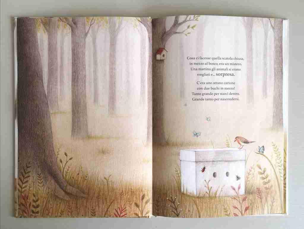 la-scatola-illustrazioni-del-libro