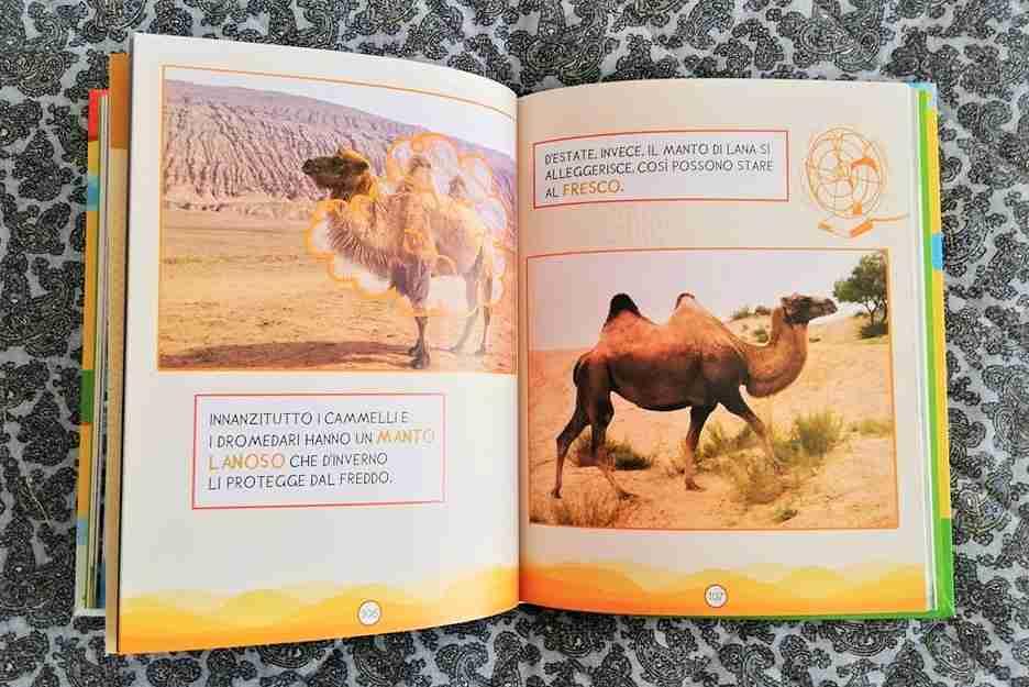 SUPEREROI SELVAGGI Avventure nella natura per piccoli lettori recensione libro