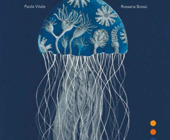 IL GIARDINO DELLE MEDUSE di Paola Vitale e Rossana Bossù, CAMELOZAMPA