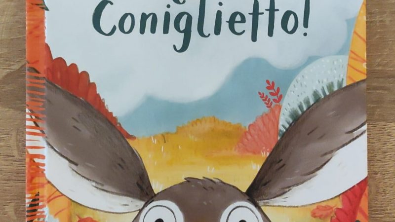 CORAGGIO CONIGLIETTO! di Nicola Kinnear, EMME EDIZIONI
