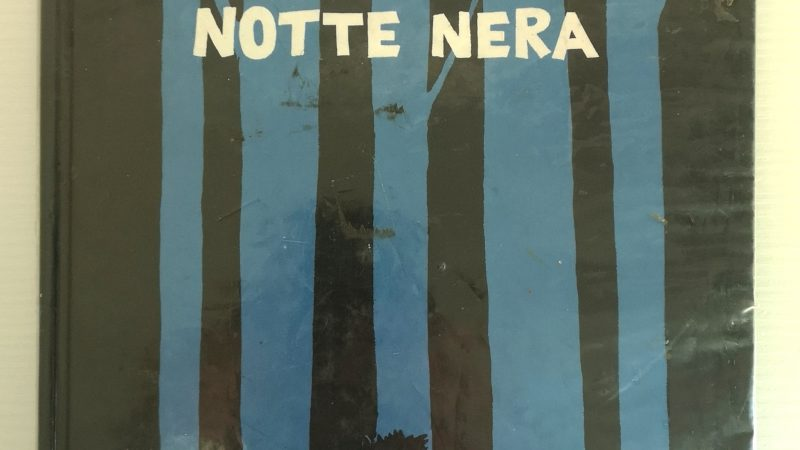 IN UNA NOTTE NERA di Dorothée de Monfreid, BABALIBRI