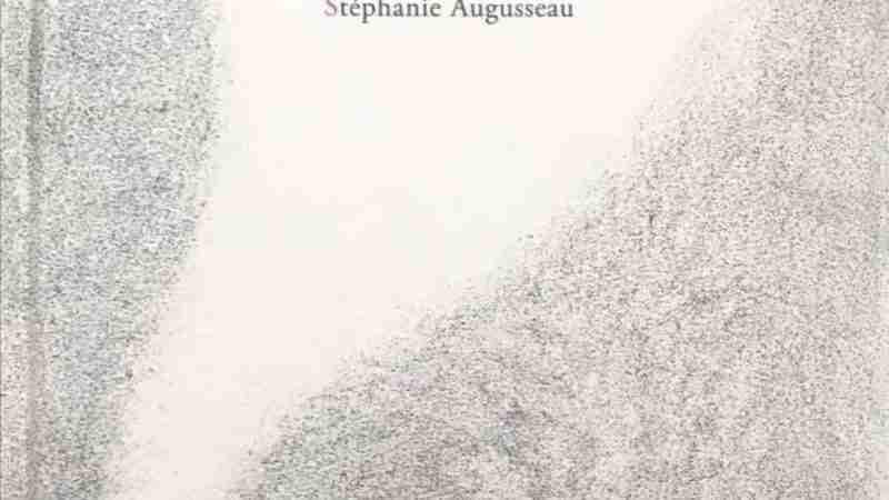 NICOLÒ di Agnès Laroche e Stéphanie Augusseau, PANE E SALE EDITORE